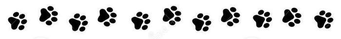 Image result for dog paw borders